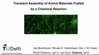 The design of an active material