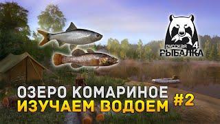 Русская рыбалка 4 #2 - Изучаем озеро Комариное