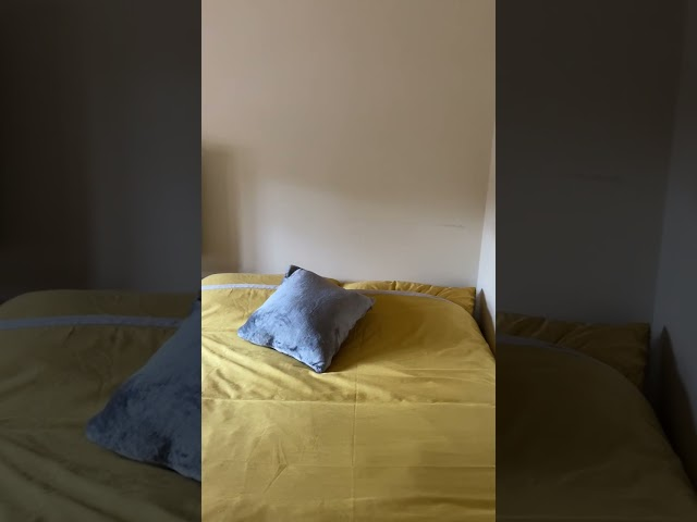 Room Available in a Lovely Cosy House Main Photo