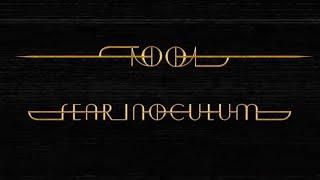 Download Tool39s new album quotFear Inoculumquot MP3