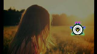 Alan Walker, K-391 & Emelie Hollow - Lily (Lyrics) By : Trap Music