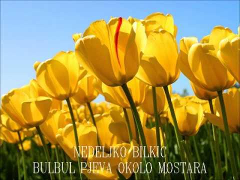 NEDELJKO BILKIC - Bulbul pjeva okolo Mostara