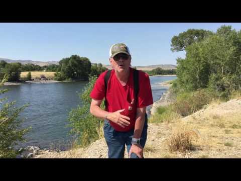 Yellowstone River Fish Kill Bio Terrorism Theory 249
