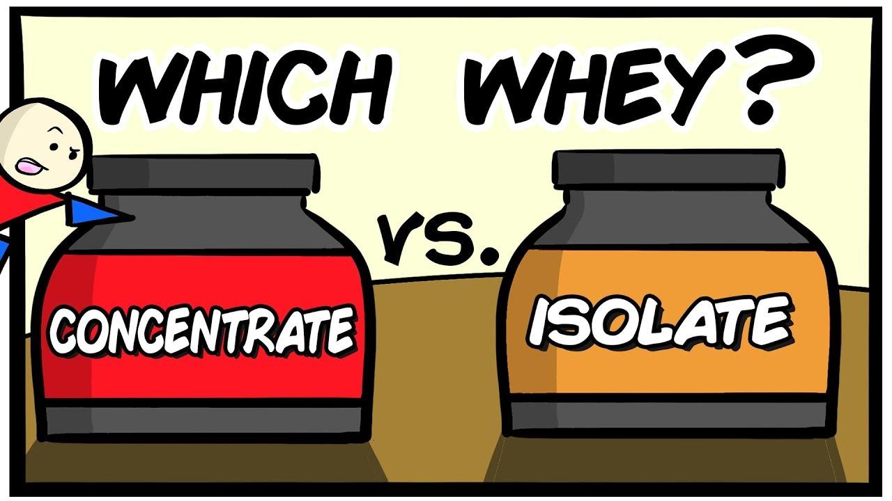 whey isolate vs whey