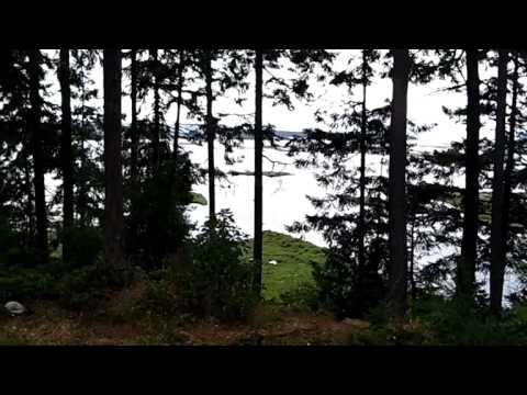 living forest oceanside campground rv park nanaimo bc. Black Bedroom Furniture Sets. Home Design Ideas