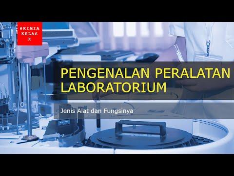 Pertanyaan kuis mobile legends lengkap dan terbaru; Kunci Jawaban Quiz Mobile Parampaa X Level 31 40 Youtube