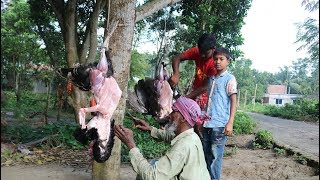 big turkey bird amp hodgepodge cooking for full village peoples tasty turkey meat curry