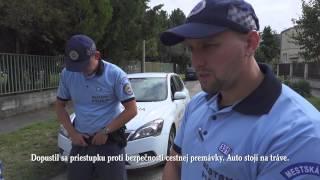 Online tlmočník - Policajti