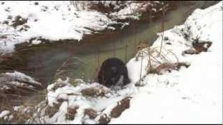 Evan   Wasser, Eis und Schnee