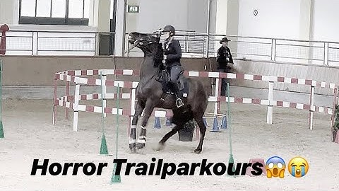 Chaos- Trail Working Equitation in Stadl-Paura