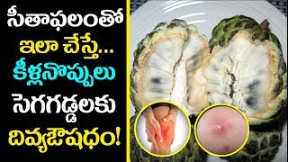 Amazing Health Benefits Of Custard Apples | Custard Apple in Pregnancy | Aarogya Sutra