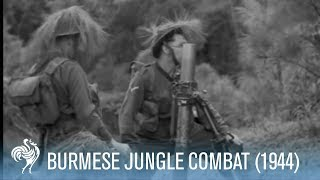 Dramatic Sniper Footage - War Action in Burmese Jungle (1944)