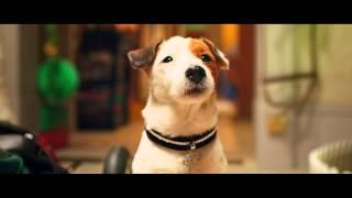 Pongo il cane milionario - Trailer