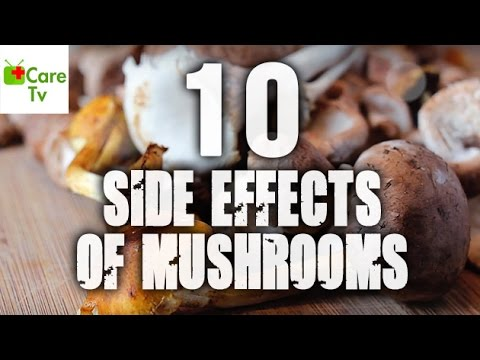 10 Side-Effects Of Mushrooms | Care TV
