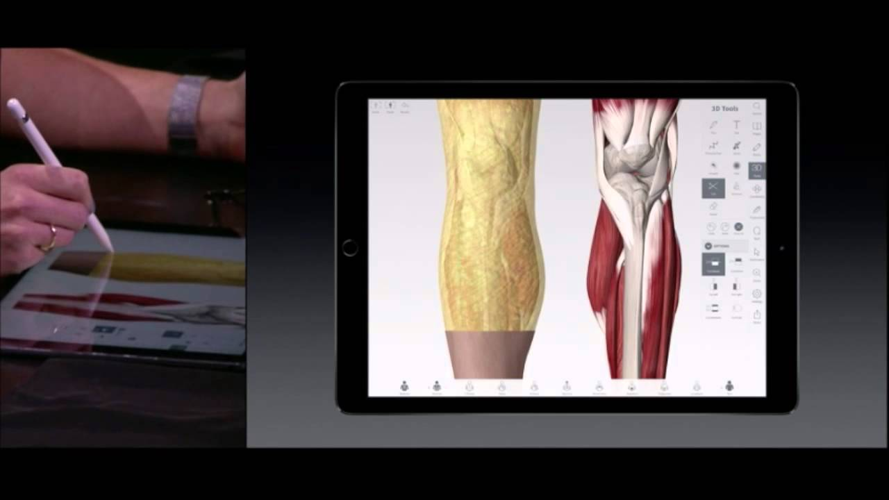 Complete Anatomy 3D4Medical Apple Keynote 2015 - YouTube