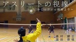 スポーツ 日刊 日刊スポーツ ニュース