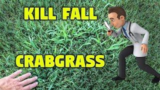 Kill Fall Crabgrass - Lawn Care