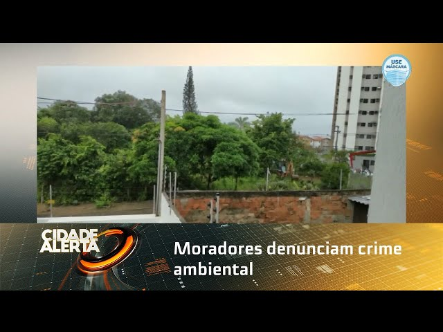 Moradores denunciam crime ambiental em área de mata