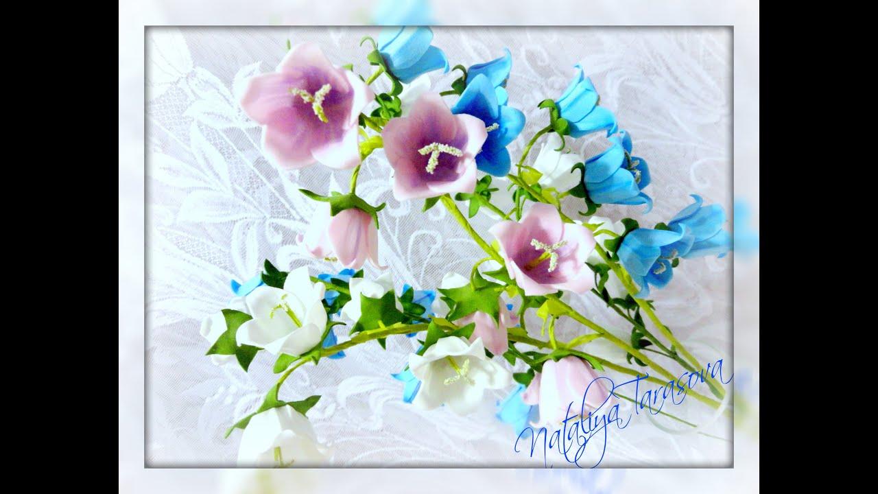 фото цветы колокольчик