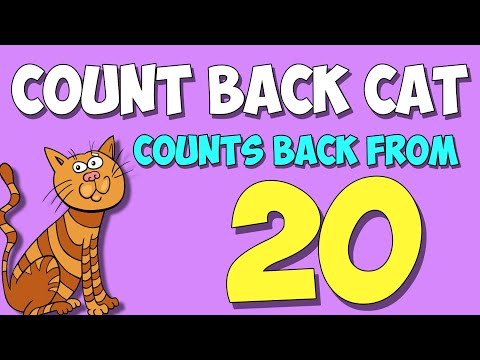 Count Back from 20 with the Count Back Cat