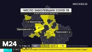 В Подмосковье выявили еще 36 случаев коронавируса - Москва 24