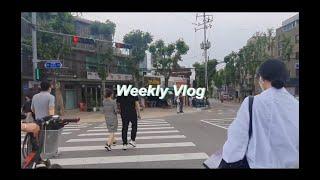 Weekly Vlog — 문래동 투어/혼돈의 코딩/경복…