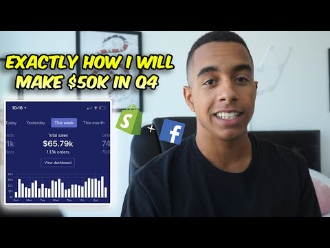 Make $50k+ This Q4 With Shopify Dropshipping + FB Ads! (Comp