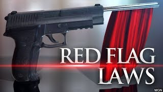 RED FLAG LAWS: THE TRUTH (NRA Supports Them Too!)