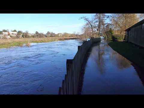 River Wey, Godalming, 19/01/14