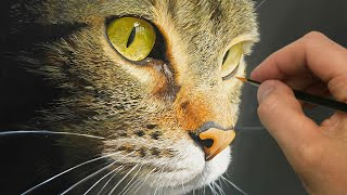Painting a Cat! | Episode 201
