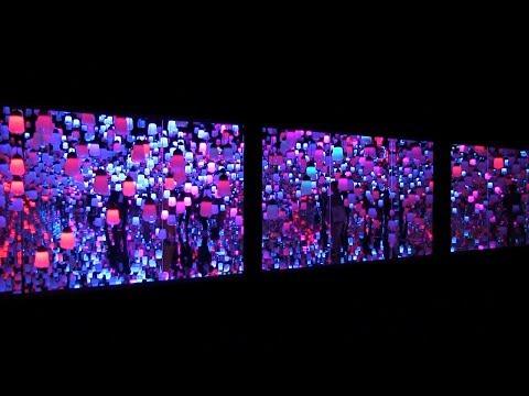 森ビル デジタルアート ミュージアム:エプソン チームラボ ボーダレスが開館