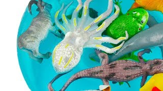 Toys For Kids Learn Sea Animal and Sea Animals Names in Water Animals For Kids