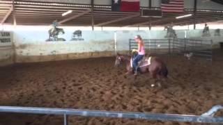 Muffin- Jared Lesh cowhorses