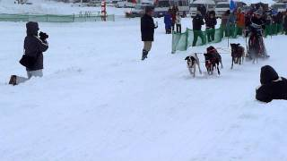JAPAN CUP 全国犬ぞり稚内大会6頭引きレース6.4km(4マイル)のスタ...