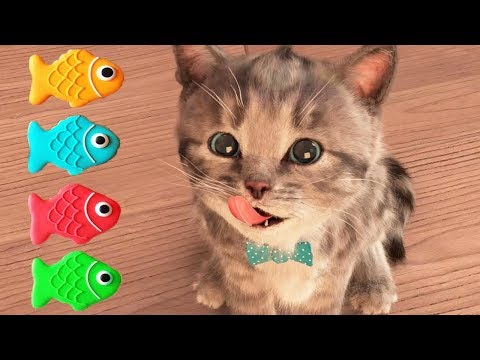 Fun Pet Care Game - Cute Kitten Alone At Home - Little Kitten My Favorite Cat - Cartoon Kids Games