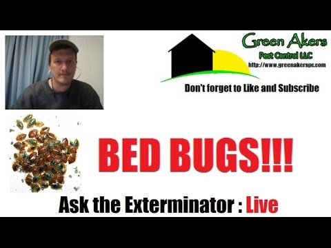 Bedbugs & Treatment | Be in control at hotels | LIVE STREAM
