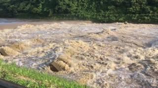大河津分水路危険水位⁉️
