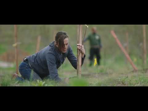 THE BIGGEST LITTLE FARM By John Chester   36th Miami Film Festival