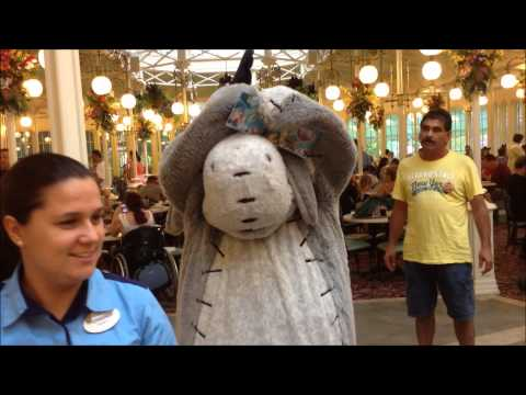 Eeyore Character Dining Meet and Greet at the Magic Kingdom Crystal Palace Restaurant