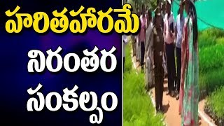Wanaparthy Collector Sweta Mohanty Inspection Nurseries For Haritha Haram