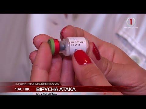 На Закарпаття йдуть чотири штами грипу, два з яких — нові для України