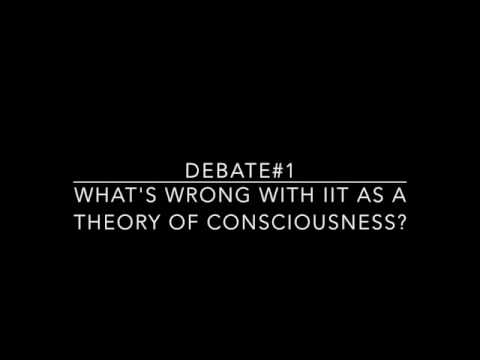 Debate#1 on integrated information theory (IIT)