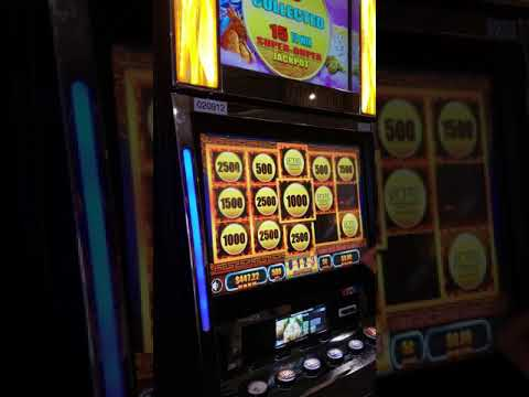 EAGLE MOUNTAIN CASINO Slots!! Big Win! 200 In 1100 Out