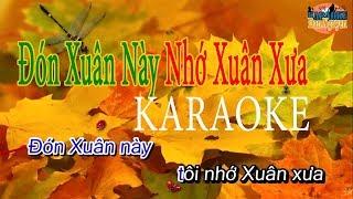 Đón Xuân Này Nhớ Xuân Xưa - Karaoke Dan Nguyen || Beat Chuẩn