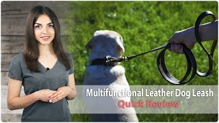 Classy Multifunctional Leather Dog Leash - Quick Review