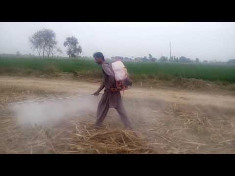 Organic agricultural in Pakistan 03017582573