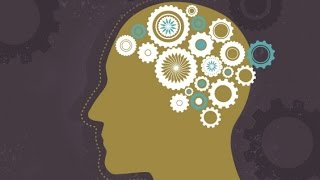 Consciousness: How the Brain Creates the Mind