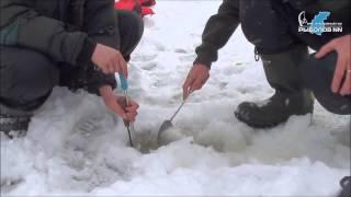 Зимняя рыбалка в Бармино. Река Волга.