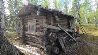 Коварные северные болота,жизнь в тайге, маленькое чудо, поход на 4 дня #2