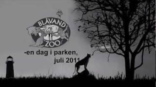 Zoo Blåvand, juli 2011